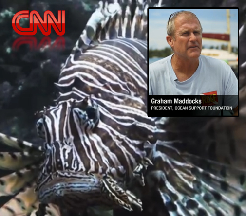 Bermuda's lionfish invasion has been featured in a CNN documentary, along with Graham Maddocks, president and founder of Ocean Support Foundation.