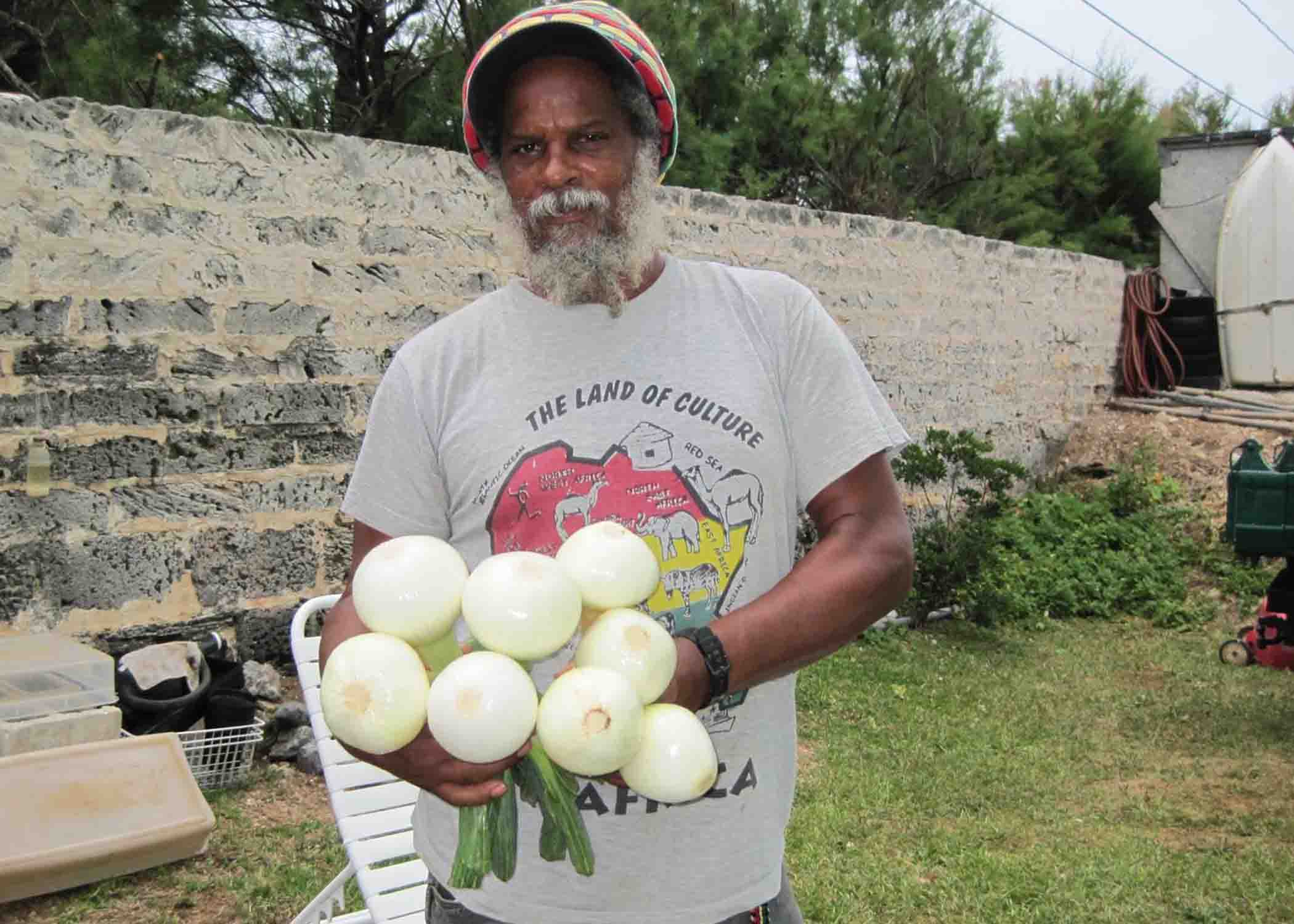 Roots: Gabre Swan of Roots Gardening holds a bunch of Bermuda onions, one of the most popular vegetables his farm produces and sells at the City Market.