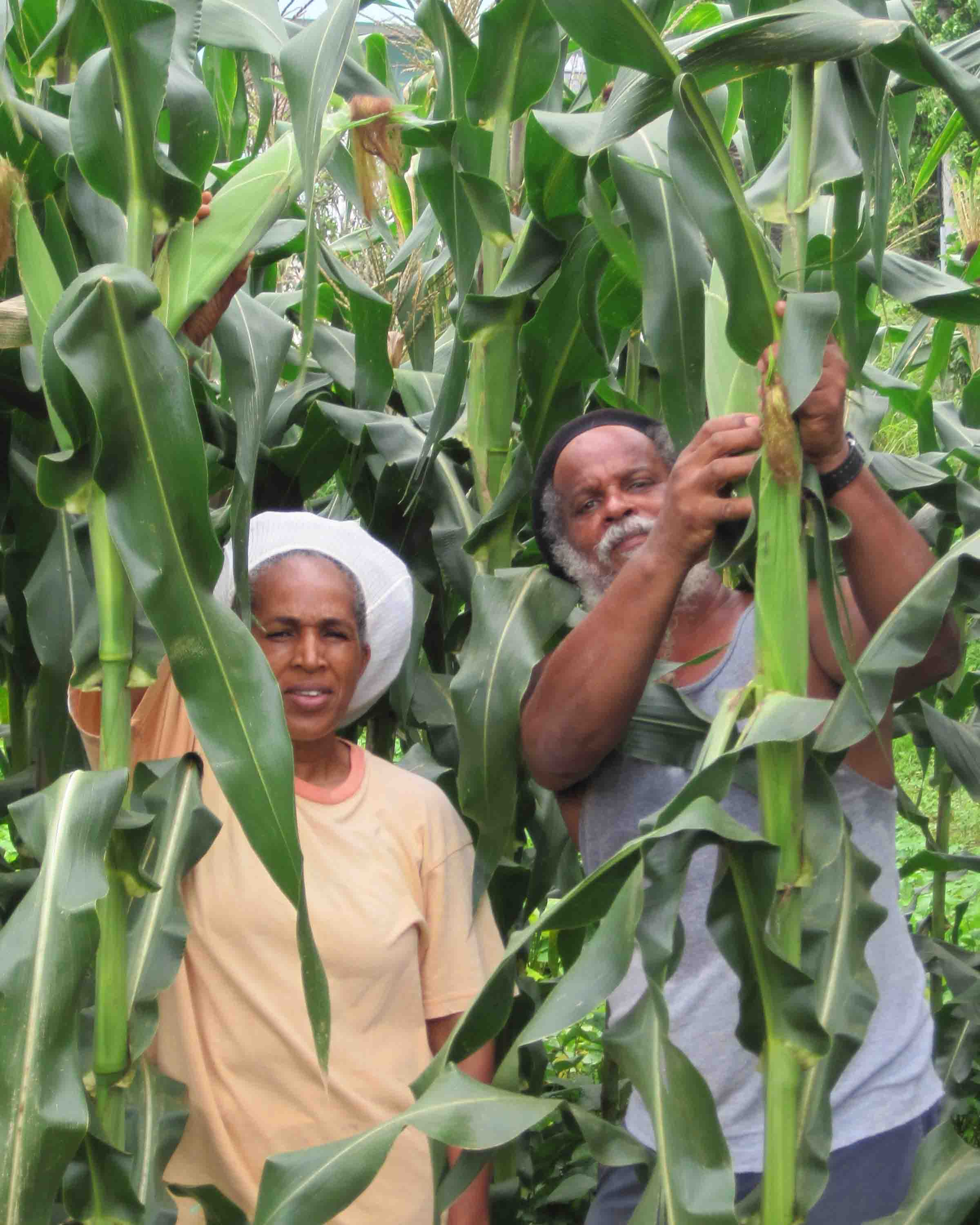 Roots: Deborah and Gabre Swan on their farm.
