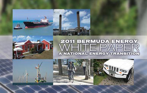 The PLP's Energy White Paper was published in 2011.