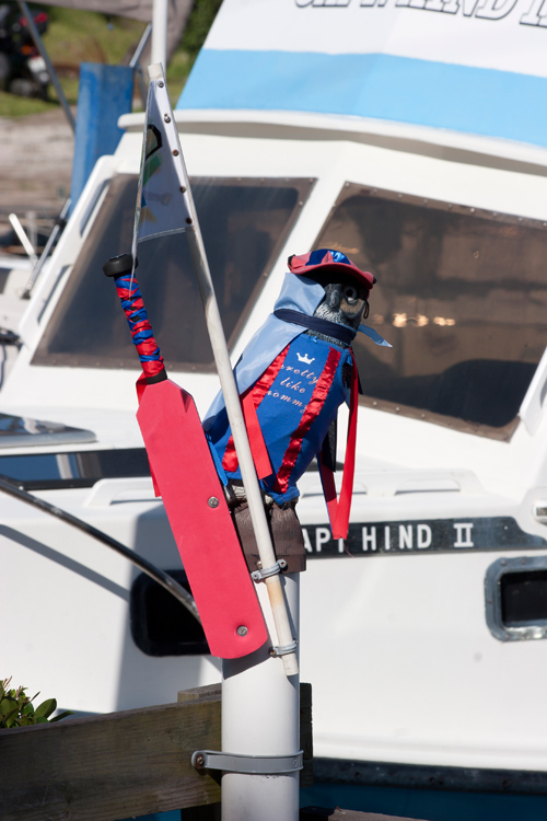 An overnight Cup Match prankster had put St. George's colours on the usually Somerset-supporting owl mascot that adorns the entry to Offshore Yachting and Maintenance. *Photo by Gary Foster Skelton