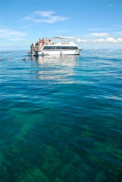 On the water: Snorkellers explore the pristine reefs of the island, off Fantasea's glass-bottom boat, the Looking Glass. <em>*Photo supplied</em>