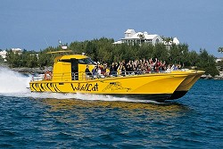 Hang on tight: The WildCat tour boat is back in Bermuda's waters for the first time in five years and the speed machine is sure to offer thrill seekers a unique perspective of the island. <em>*Photo supplied</em>